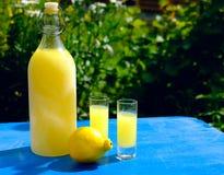 Summer, garden party with limoncello Royalty Free Stock Photos