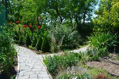Pathways in the Summer Garden royalty free stock photos