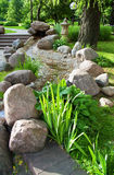 Summer garden with plants and stones Stock Photo