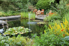 Summer Garden with a Pond. Beautiful garden with a pond and seats Stock Photos