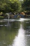 Summer garden is Queenstown. Beautiful summer garden in Queenstown, New Zealand Stock Photos