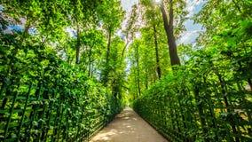 Summer garden in Saint Petersburg in spring, Russia stock photo