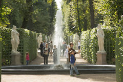 Summer Garden in Sankt Petersburg Royalty Free Stock Images