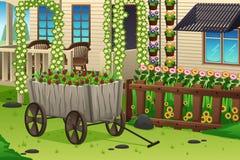 Summer Garden Scene Royalty Free Stock Photos