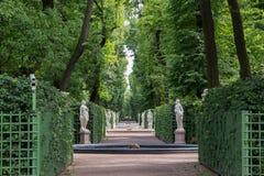 Summer garden in St. Petersburg Royalty Free Stock Photography