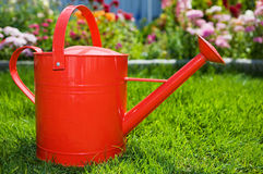 Summer gardening Royalty Free Stock Images
