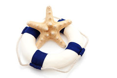 Summer gear; starfish and life buoy Stock Photography