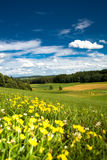 Summer in germany Royalty Free Stock Photography