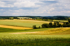 Summer in germany Stock Images