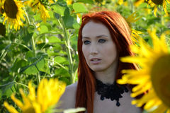 Summer Girl. Woman in a field of sunflowers Royalty Free Stock Photography