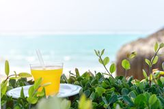 summer, a glass of fresh juice from yellow tropical fruits on the beach, on green grass, against the background of the sea. royalty free stock images