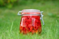 Summer on a glass jar. Stock Photos