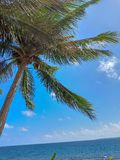 Summer glaze in a beach stock photos