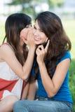 Summer gossip Stock Photography