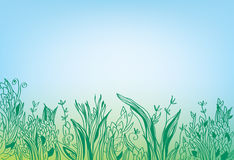 Summer grass border banner - hand drawn Royalty Free Stock Photography