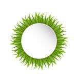 Summer grass circle, go green concept Royalty Free Stock Photography