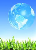 Summer grass  and Earth Royalty Free Stock Photo