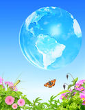Summer grass, flowers insect and Earth on blue sky background Stock Photo