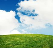 Summer grass lawn. With sky stock photos