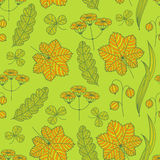 Summer grass pattern Stock Images