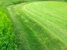 Free Summer Grassy Green Lawn On The Golf Course Royalty Free Stock Images - 119492849