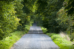 Summer gravel road Royalty Free Stock Photography