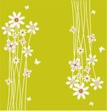 Summer green back. Vector illustration Stock Image