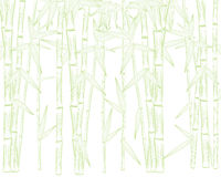 Summer green bamboo frame Royalty Free Stock Photography