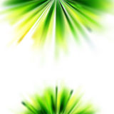 Summer green grass abstract background Royalty Free Stock Image