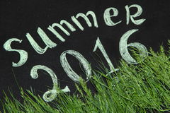 Summer 2016 in the green grass. On the Board royalty free illustration