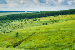 Summer green landscape view Royalty Free Stock Images