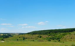 Summer green landscape view. Forest, grass and sky Stock Images