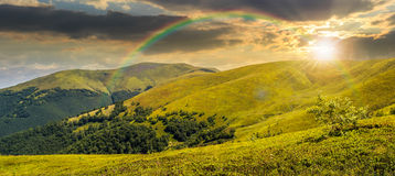 Summer green meadow in mountain panorama at sunset Royalty Free Stock Photography