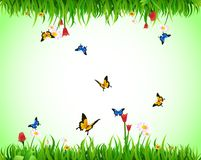 Summer green meadow. For your design with butterfly Royalty Free Stock Image