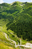Summer green mountains Stock Photos