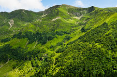 Summer green mountains Royalty Free Stock Photos