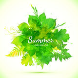 Summer green watercolor painted foliage banner Stock Images
