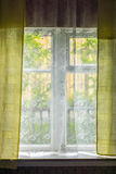 Summer greenery outside rustic window Stock Images