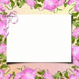Summer greeting card Royalty Free Stock Images