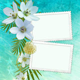 Summer Greeting Card Stock Photography