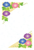 Summer greeting card. Of morning glories Royalty Free Stock Image