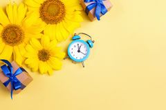Summer greeting card with sunflowers, gift boxes and alarm clock royalty free stock images
