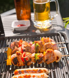 Summer grill party Royalty Free Stock Images