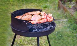 Summer grilling. Fresh meat on grill Royalty Free Stock Photos