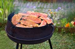 Summer grilling in garden. Fresh meat on grill Stock Photography