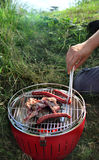 Summer grilling on the nature Royalty Free Stock Photo
