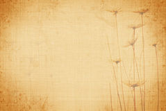 Summer grunge canvas Royalty Free Stock Photography