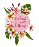 Summer hand drawn floral vintage card with Royalty Free Stock Photography