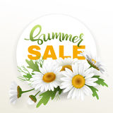 Summer handmade lettering and bouquet realistic daisy, camomile flowers on white background. Sale composition. Vector Royalty Free Stock Photo