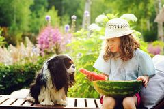 Summer happy child girl eating watermelon outdoor on vacation. And sharing it with her dog royalty free stock photography